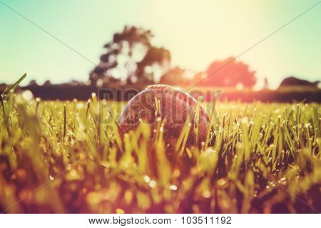 Baseball in the outfield grass. Very shallow depth of focus, focus on grass blades and front of baseball.