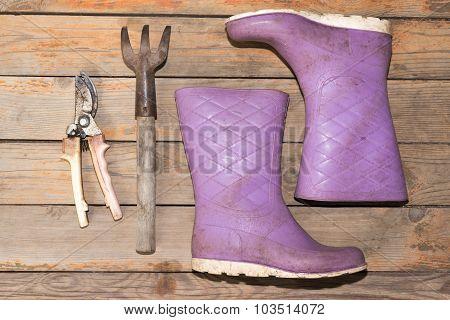 Wellingtons with garden tools