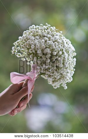Lady's Hand Holding Baby's Breath Flowers