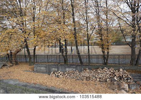 Playground In The Autumn Park