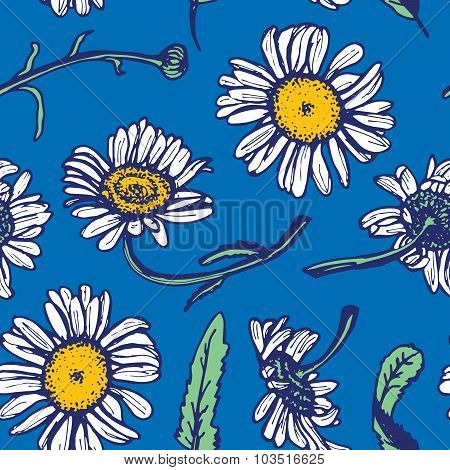 Beautiful vintage background with white daisies seamless patern on blue background. Vector