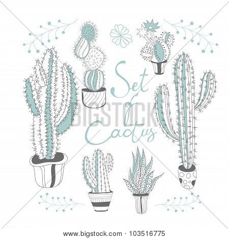 Set of cactus.