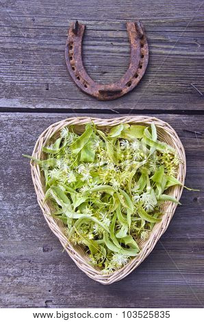 Linden Blossoms In Heart Shaped Basket With A Horseshoe