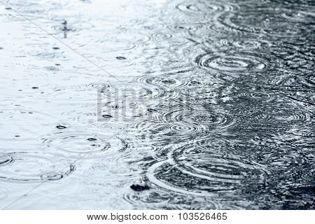 Rain And Water Ripples