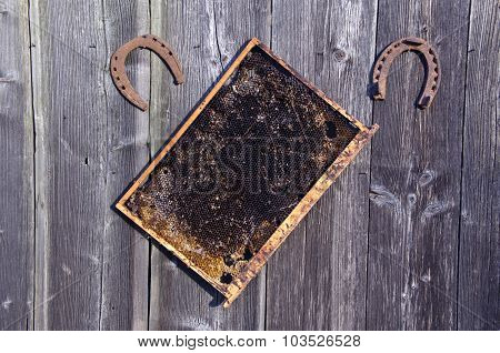 Honeycomb With Two Old Rusty Horseshoes