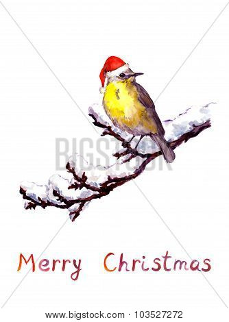 Romantic christmas card with bird in red santa hat