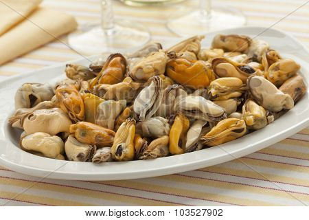 Dish with fresh cooked mussels ready to eat