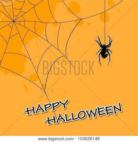 Halloween Background With Spider