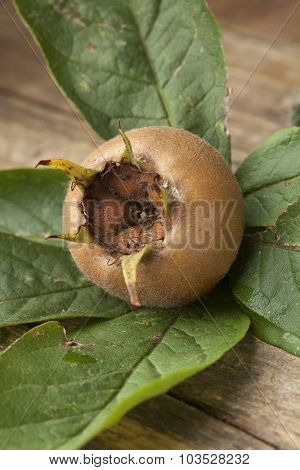 Fresh medlar and leaves close up