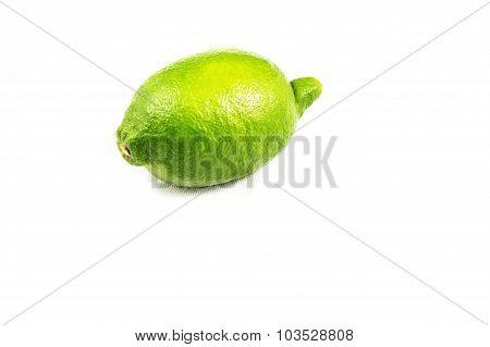 Green Lemon Lime