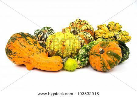 Pumpkin Isolated