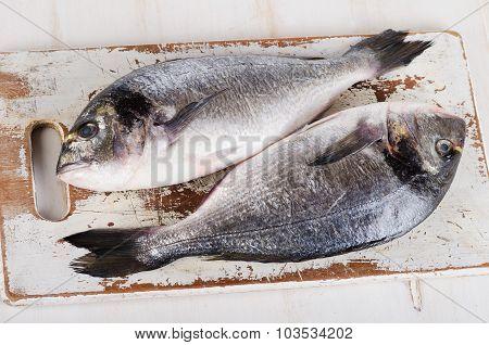 Fresh Dorado Fish On Wooden Cutting Board