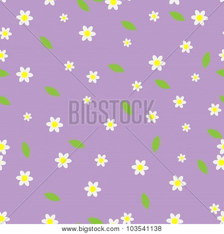 Seamless Flower Pattern Camomile