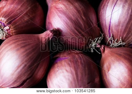 Dense shallot onions background