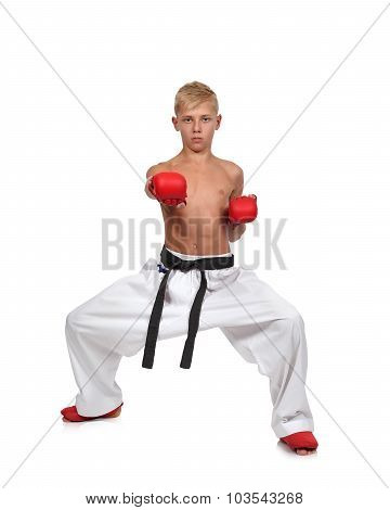 Boy In Red Gloves Training Karate