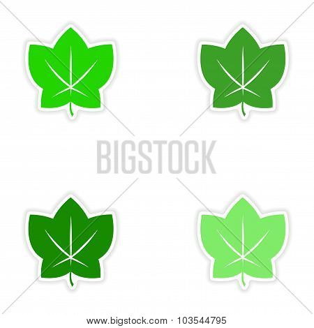 assembly realistic sticker design on paper leaves autumn