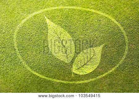 Fresh Leaves On Green Grass Poster Illustration Of Healthy Food