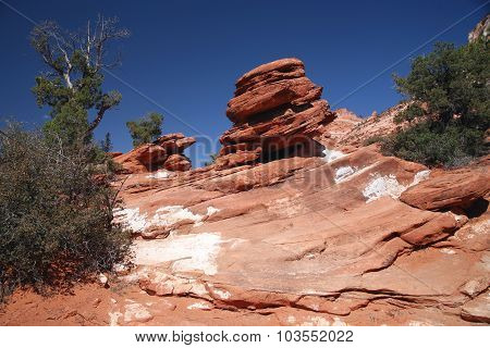 Rock In Zion National Park, Utah, Usa