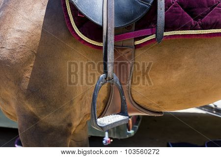 Close Up Of The Stirrup On The Horse During Competition Matches Riding Round Obstacles