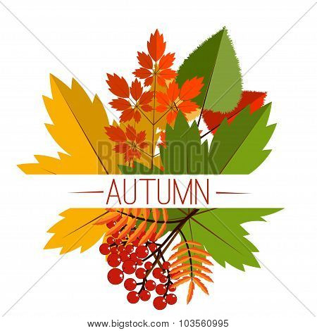 Autumn foliage vector banner. Autumn typographical background with autumn leaves. Autumn typographic