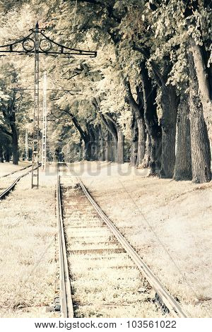 Old Style Photo Of Railway In Forest