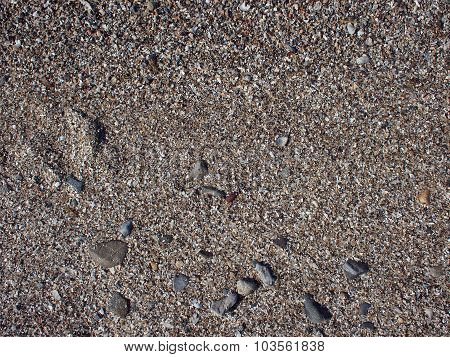 Wet Sand And Small Stones With Fragments Of Shells