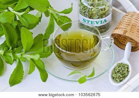 Stevia Infusion.