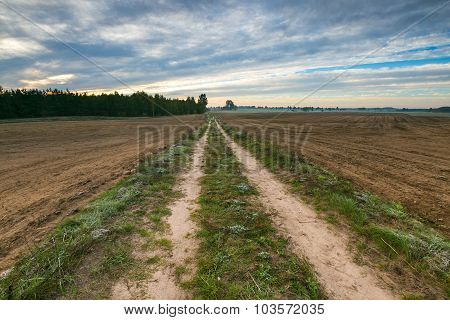 Beautiful Landscape With Road And Fields.