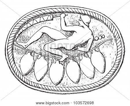 Dance of amphorae, vintage engraved illustration.