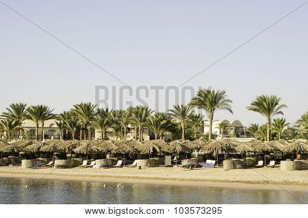 Beach Umbrellas Against The Backdrop Of Palm Trees.