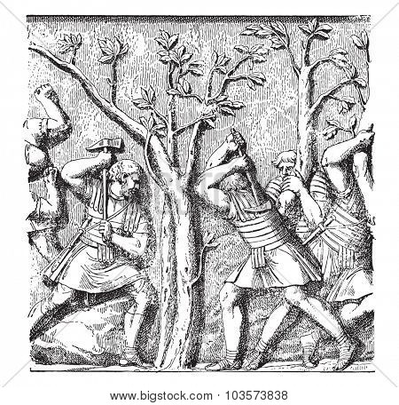 Roman soldiers shooting down a tree, vintage engraved illustration.