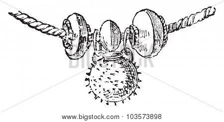 Fragment necklace, vintage engraved illustration.