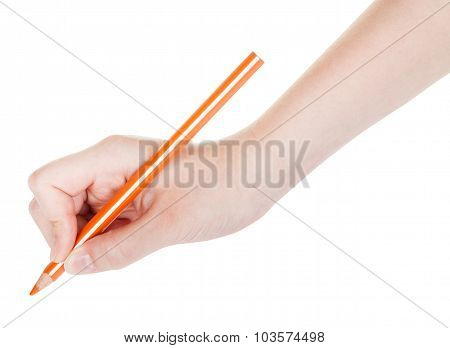 Hand Draws By Wooden Orange Pencil Isolated