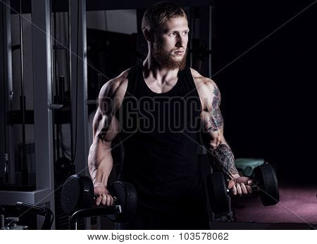 Very Power Athletic Guy Bodybuilder , Execute Exercise With Dumbbells, In Dark Gym