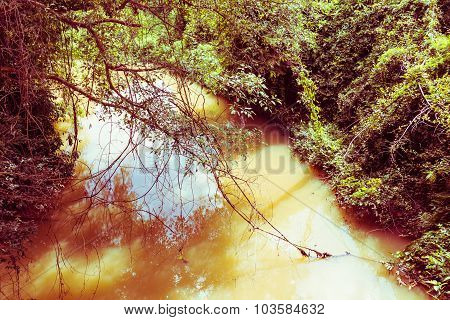 The Rivulet In The Jungle, Vintage Toning