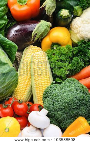 Fresh vegetable background, healthy organic fresh local farmers market, broccoli, sweet corn, parsley, mushroom, tomatoes, squash, aubergine, peppers, capsicums