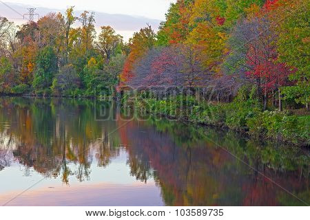 Trees and reflections around a city pond in Falls Church Virginia USA.