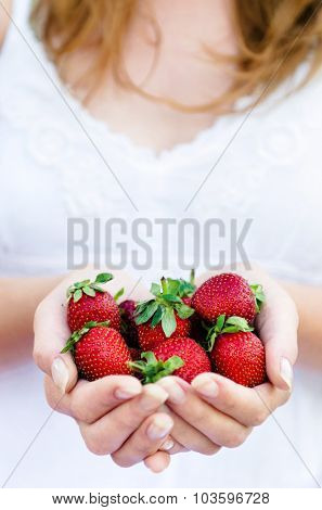 Girl in white dress holds a handful of freshly picked red strawberries