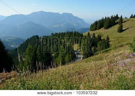 Mountains, Meadow, Trees And Road In Alps In Germany