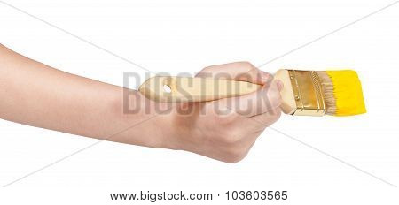 Hand With Flat Paintbrush Paints In Yellow Paint
