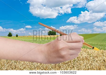 Paintbrush Paints Yellow Ripe Wheat In Green Field