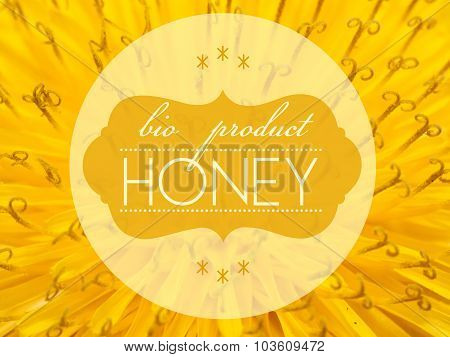 Bio Product Honey Concept With Flower Macro