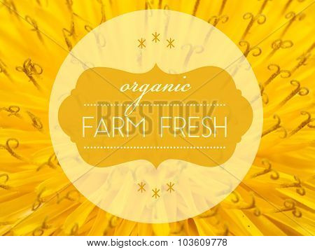 Organic Farm Fresh With Flower Macro Background
