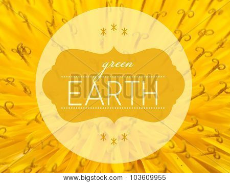Green Earth With Flower Macro Background