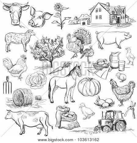 Farm collection - hand drawn set