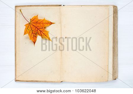 Open Book And Autumn  Leaf