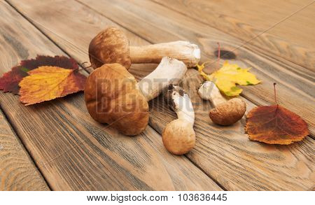 Boletus Mushrooms With Autumn Leaves  On A Wooden Background