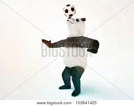 Character Circus Bamboo Bear Giant Panda Standing Spreading Legs To The Sides Chasing A Ball On His