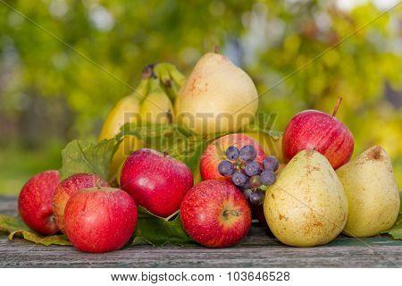 fruits in wooden table outdoor in the garden