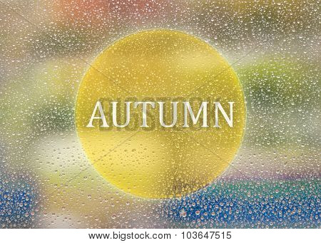 Drops Of Rain On Glass Background. Nature Out Focus. Autumn Abstract Backdrop